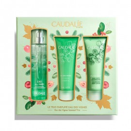 Caudalie Promo  Eau de Vignes Scented Trio Fresh Fragrance 50ml & Body Lotion 50ml & Shower Gel 50ml