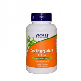 Now Astragalus 500 mg 100caps